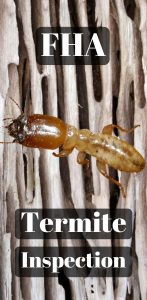 fha termite inspection